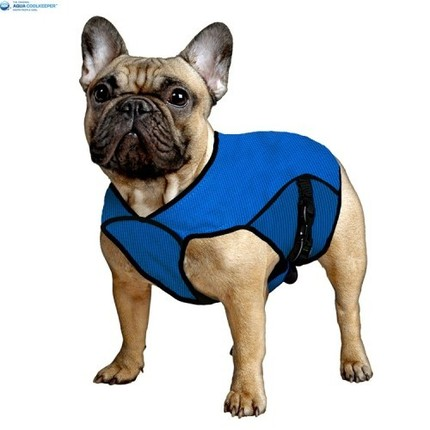 Aqua coolkeeper blua pacific pet jacket